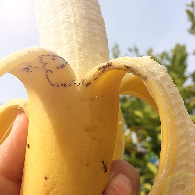 おばかバナナアート