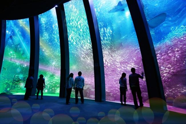 出典:http://www.seaparadise.co.jp